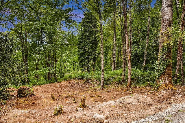 MLS# 1294151 Vacant land